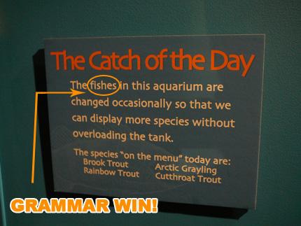 grammar win